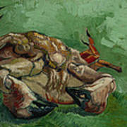 A Crab On Its Back Art Print