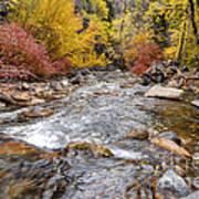 American Fork Canyon Creek In Autumn - Utah Art Print