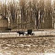 Amish Buggy And Corn Crib Art Print