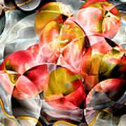Apple Bowl Art Print