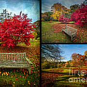 Autumn In The Park Art Print