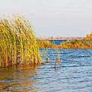 Autumn On The Dnieper River Art Print