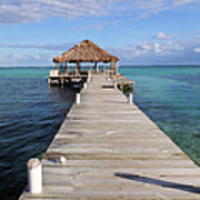 Beach Deck With Palapa Floating In The Water Art Print