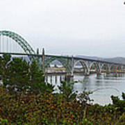 Big River Bridge Oregon Coast Art Print