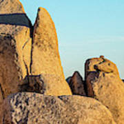 Boulders In A Desert, Joshua Tree Art Print