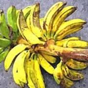 Bunch Of Banana Art Print