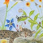 Cat And Mouse Print by Gerald Strine