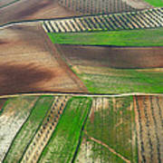 Cereal Fields From The Air Art Print