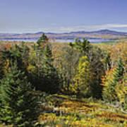 Colorful Fall Forest Near Rangeley Maine Art Print