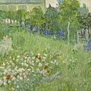 Daubigny's Garden Art Print