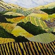 Delta Fields Art Print