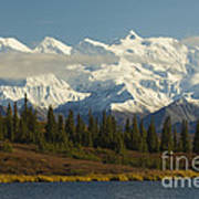 Denali National Park Art Print