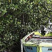 Docked By The Mangrove Trees Art Print
