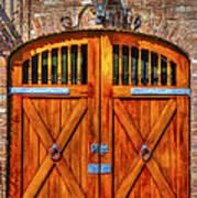Doors Of Charleston Art Print