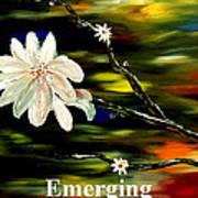 Emerging Art Print