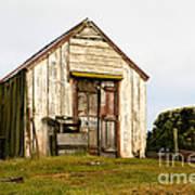 Falkland Island Farm Art Print