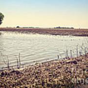 Flooded Farmland Art Print