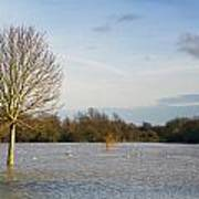Flooded Field In Rural Essex Art Print