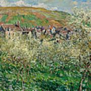 Flowering Plum Trees Art Print