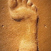 Footprint Art Print