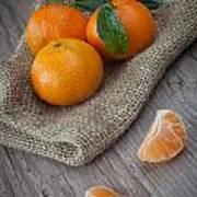 Fresh Tangerine Art Print by Sabino Parente