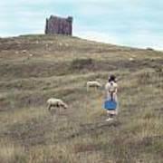 Girl With Sheeps Art Print
