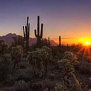 Good Morning Arizona  Art Print