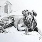 Hershey Art Print