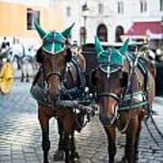 Horses And Carriage In Vienna Art Print
