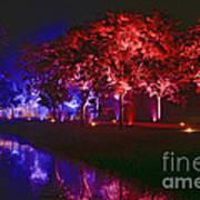 Illumina Light Show At Schloss Dyck Germany Art Print by David Davies