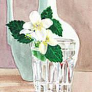 Jasmine Art Print