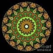 Kaleidoscope Ernst Haeckl Sea Life Series Art Print