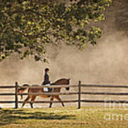 Last Ride Of The Day Art Print