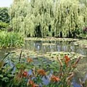 Lily Pond - Monets Garden Art Print