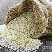 Long Grain Rice In Burlap Sack Print by Elena Elisseeva