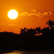 Marco Island Sunset Art Print