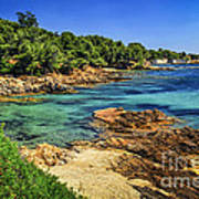 Mediterranean Coast Of French Riviera Print by Elena Elisseeva