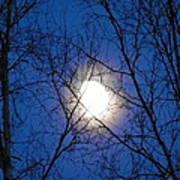 Moon Art Print by Jennifer Kimberly