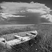 Of Land Sea And Sky Art Print