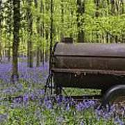 Old Farm Machinery In Vibrant Bluebell  Spring Forest Landscape Art Print