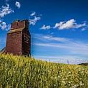 Old Grain Elevator Art Print