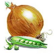 Onion And Peas Art Print