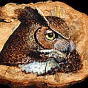 Owl On Oak Slab Art Print