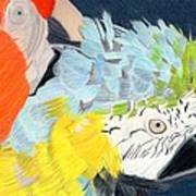 2 Parrots Art Print by Bav Patel