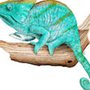 Parsons Chameleon Art Print