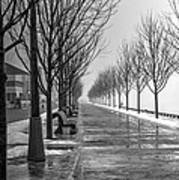 Path Through Fog Art Print