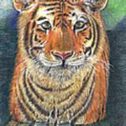 Patient Hunter Art Print