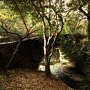 Pedestrian Bridge And Strawberry Creek  . 7d10152 Art Print by Wingsdomain Art and Photography