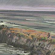 Pescadero Beach Art Print