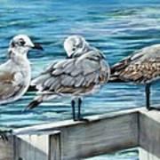Pier Gulls Art Print